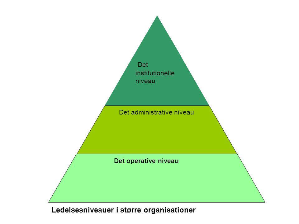Det institutionelle niveau