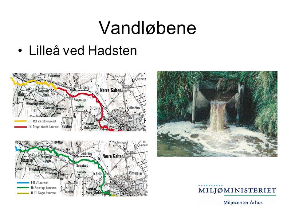 Vandløbene Lilleå ved Hadsten
