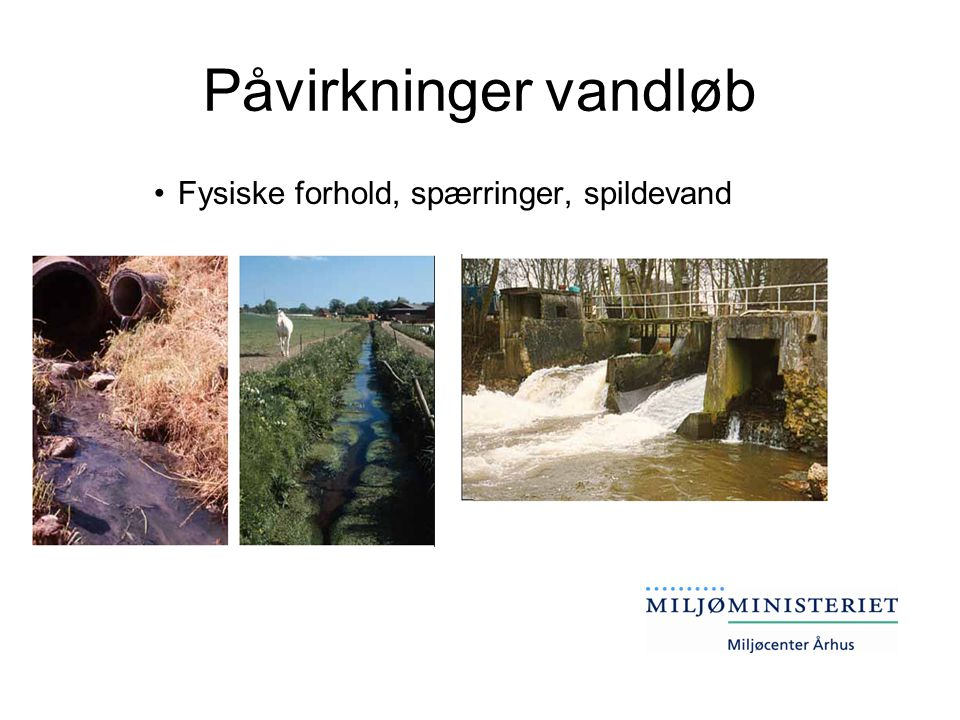 Påvirkninger vandløb Fysiske forhold, spærringer, spildevand