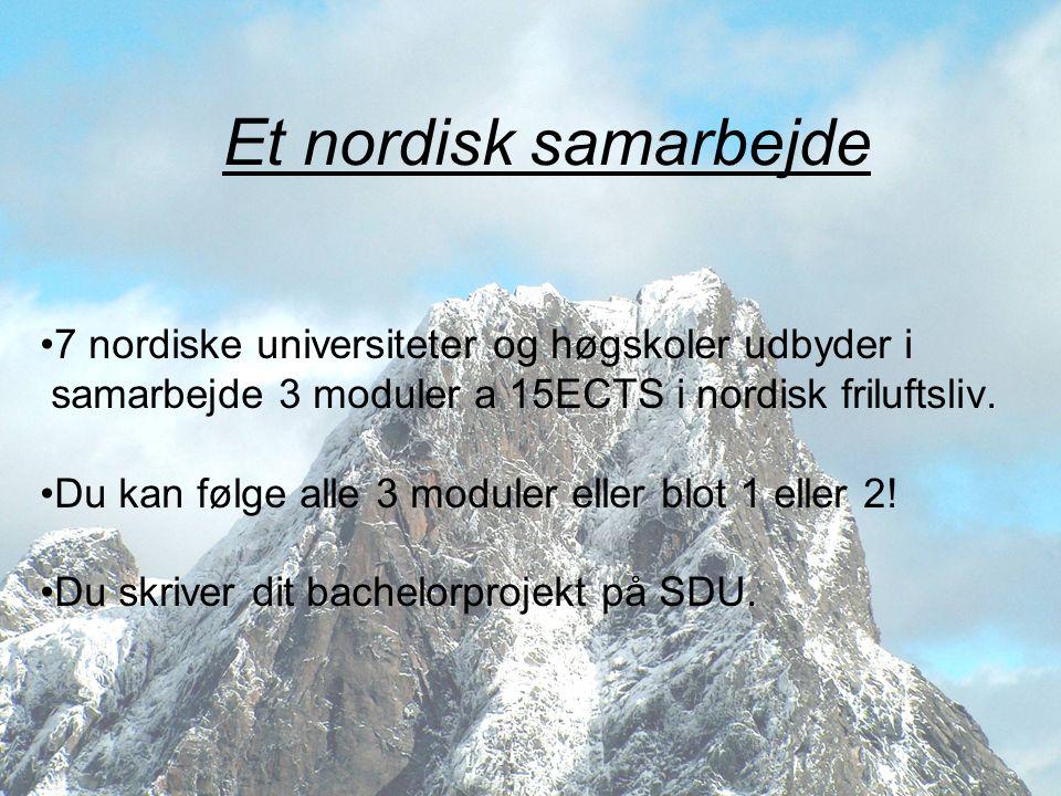 Et nordisk samarbejde 7 nordiske universiteter og høgskoler udbyder i
