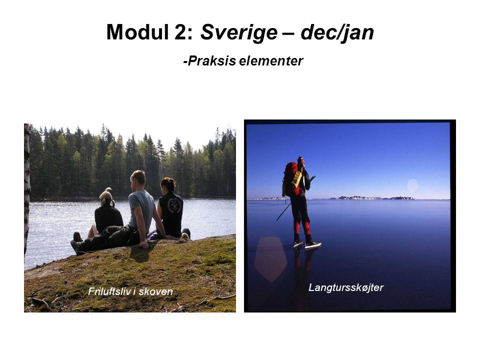 Modul 2: Sverige – dec/jan -Praksis elementer