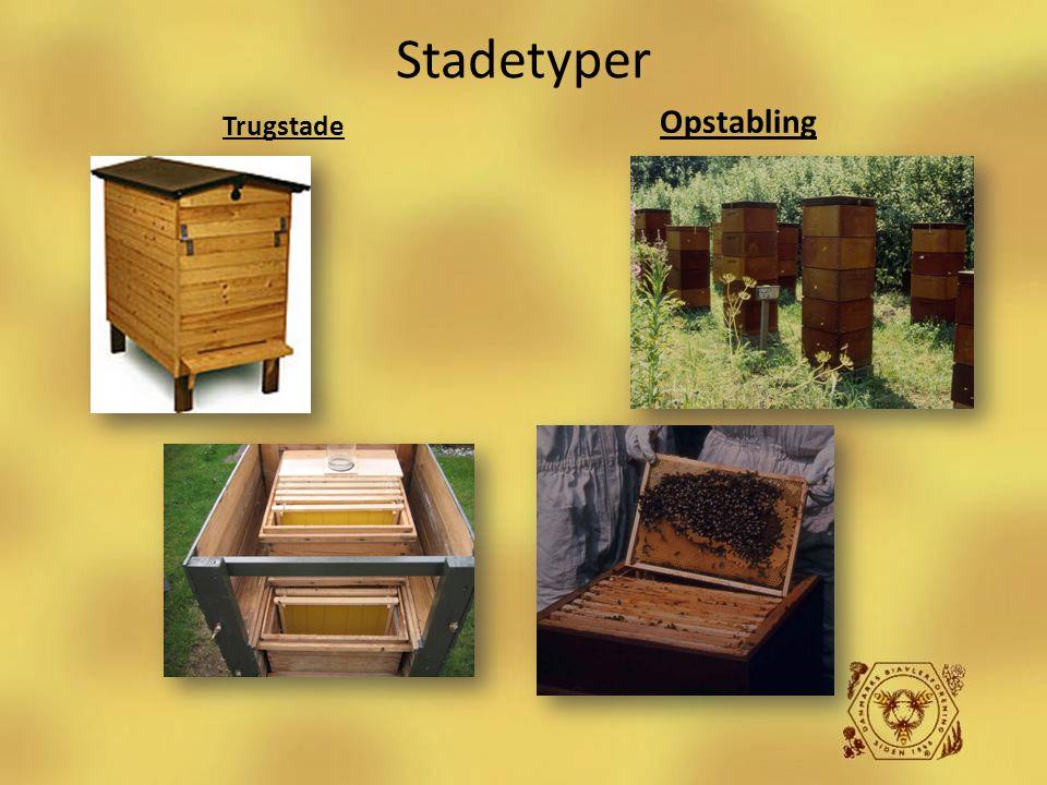 Biavlerens redskaber Stadetyper Opstabling Trugstade