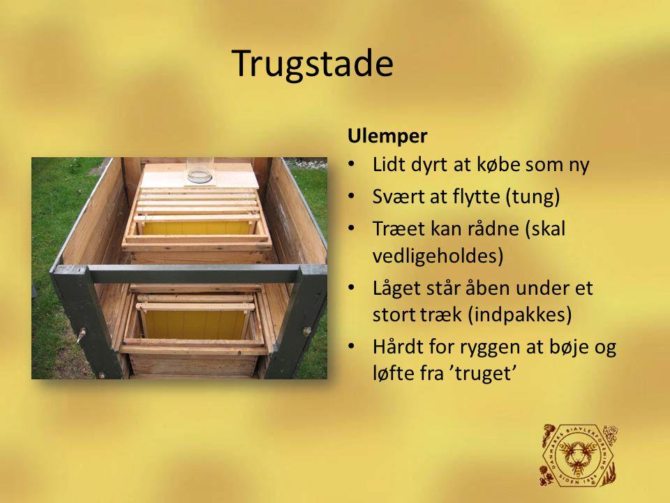 Trugstade Ulemper Lidt dyrt at købe som ny Svært at flytte (tung)