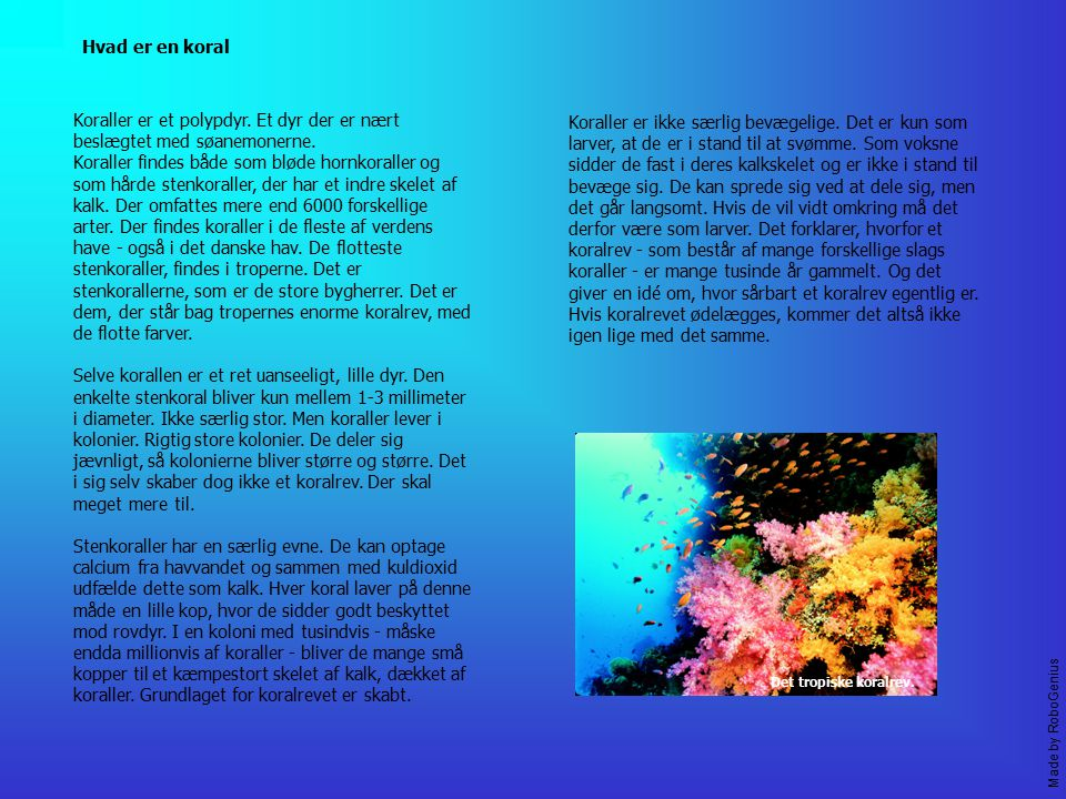 Hvad er en koral Koraller er et polypdyr. Et dyr der er nært beslægtet med søanemonerne.