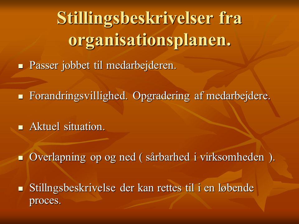 Stillingsbeskrivelser fra organisationsplanen.