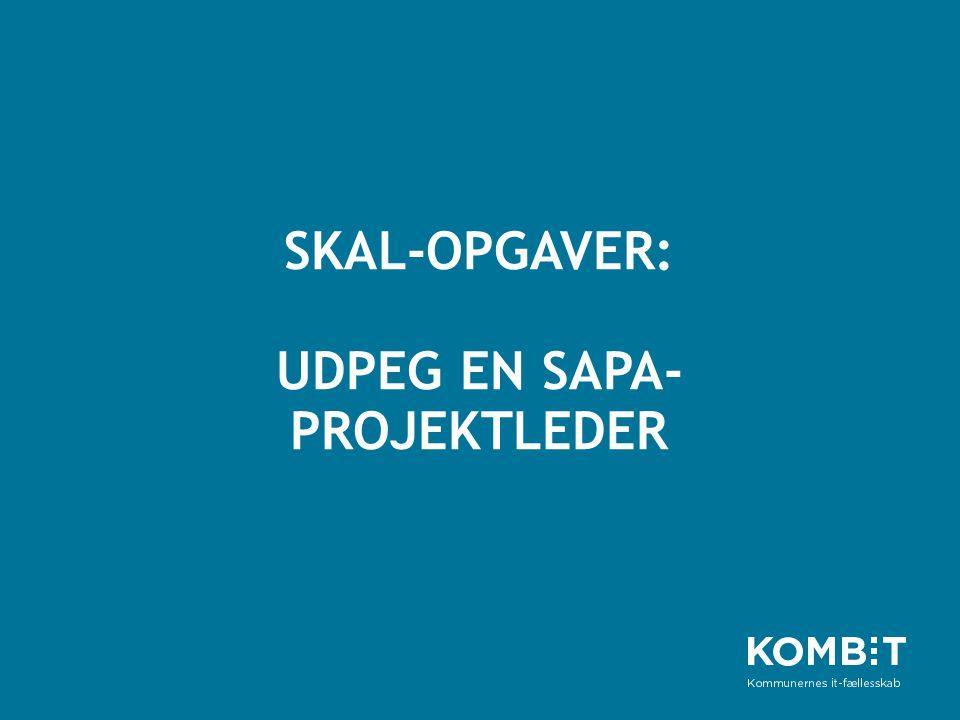 SKAL-OPGAVER: UDPEG EN SAPA-PROJEKTLEDER