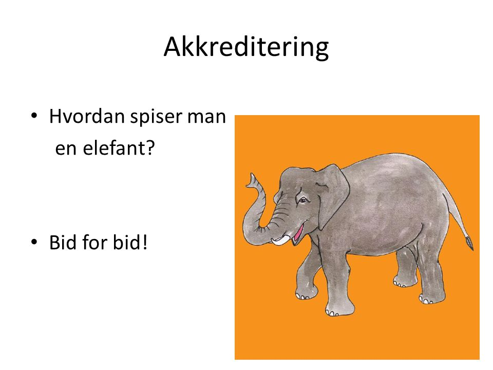 Akkreditering Hvordan spiser man en elefant Bid for bid!