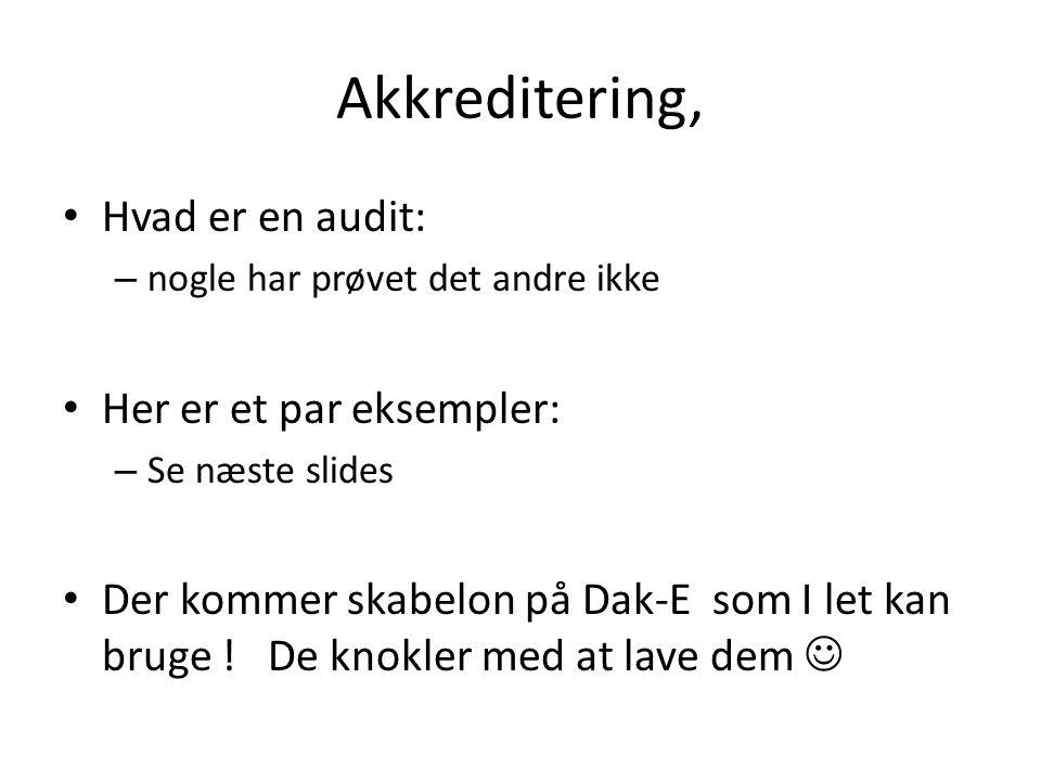 Akkreditering, Hvad er en audit: Her er et par eksempler: