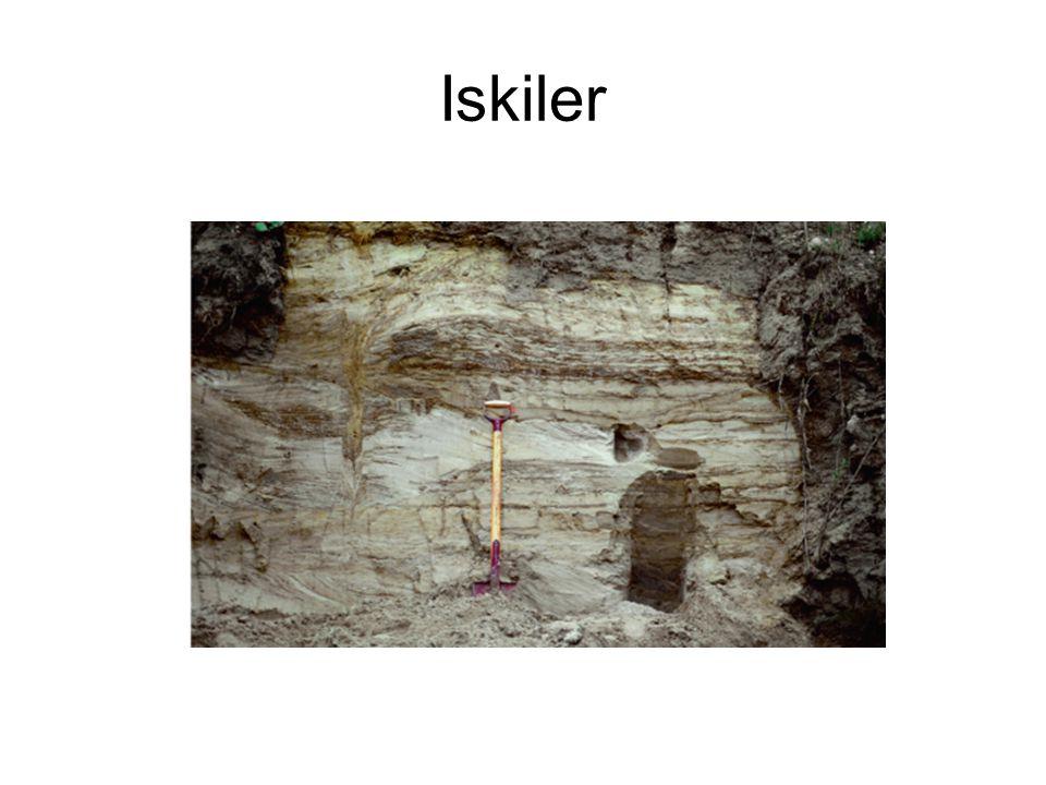Iskiler Kilde: Michael Houmark-Nielsen, den store danske