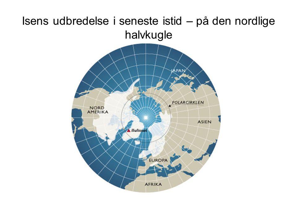 Isens udbredelse i seneste istid – på den nordlige halvkugle