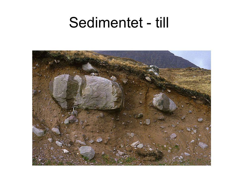 Sedimentet - till