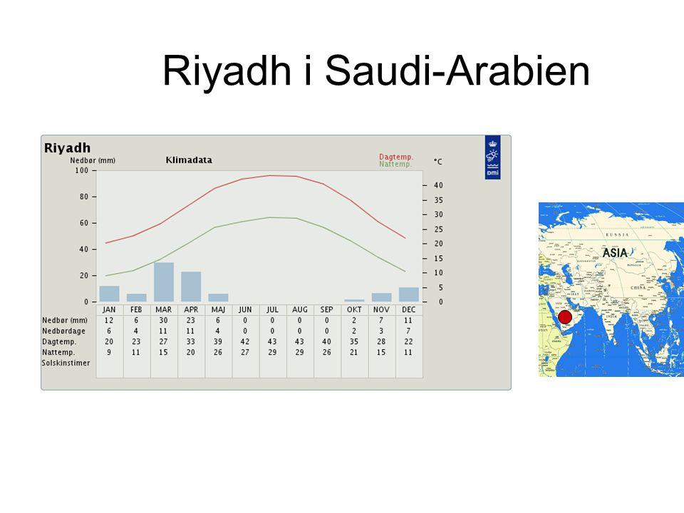 Riyadh i Saudi-Arabien