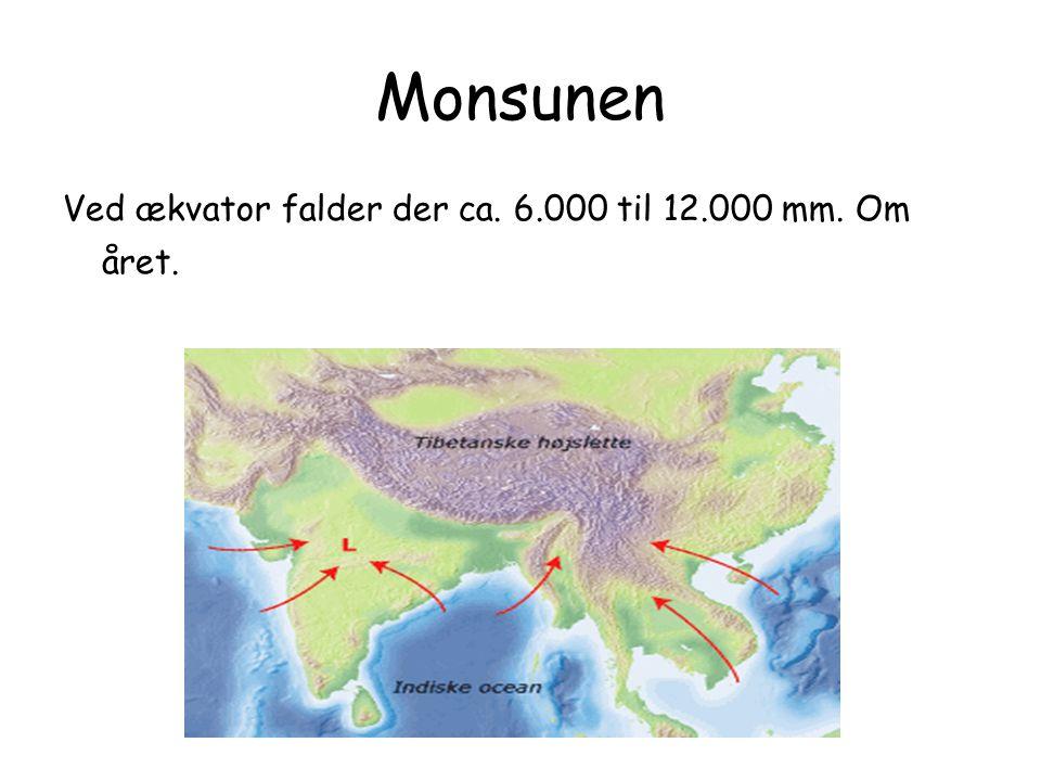 Monsunen Ved ækvator falder der ca. 6.000 til 12.000 mm. Om året.
