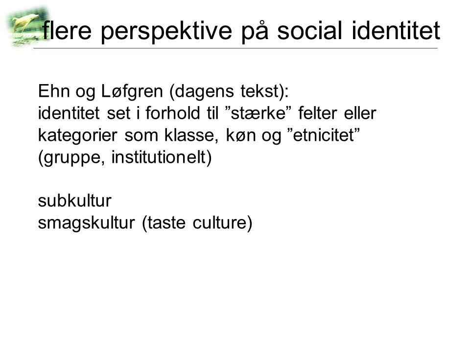 flere perspektive på social identitet