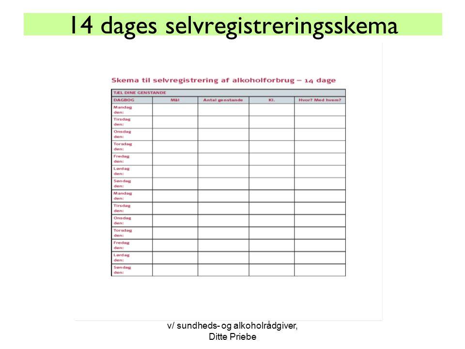 14 dages selvregistreringsskema