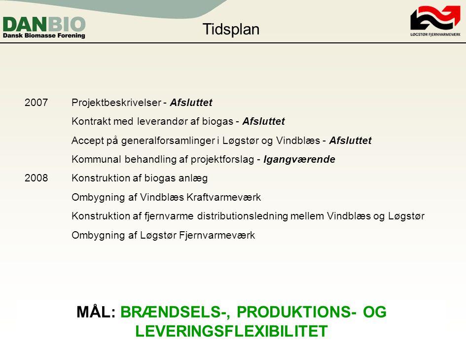 MÅL: BRÆNDSELS-, PRODUKTIONS- OG LEVERINGSFLEXIBILITET