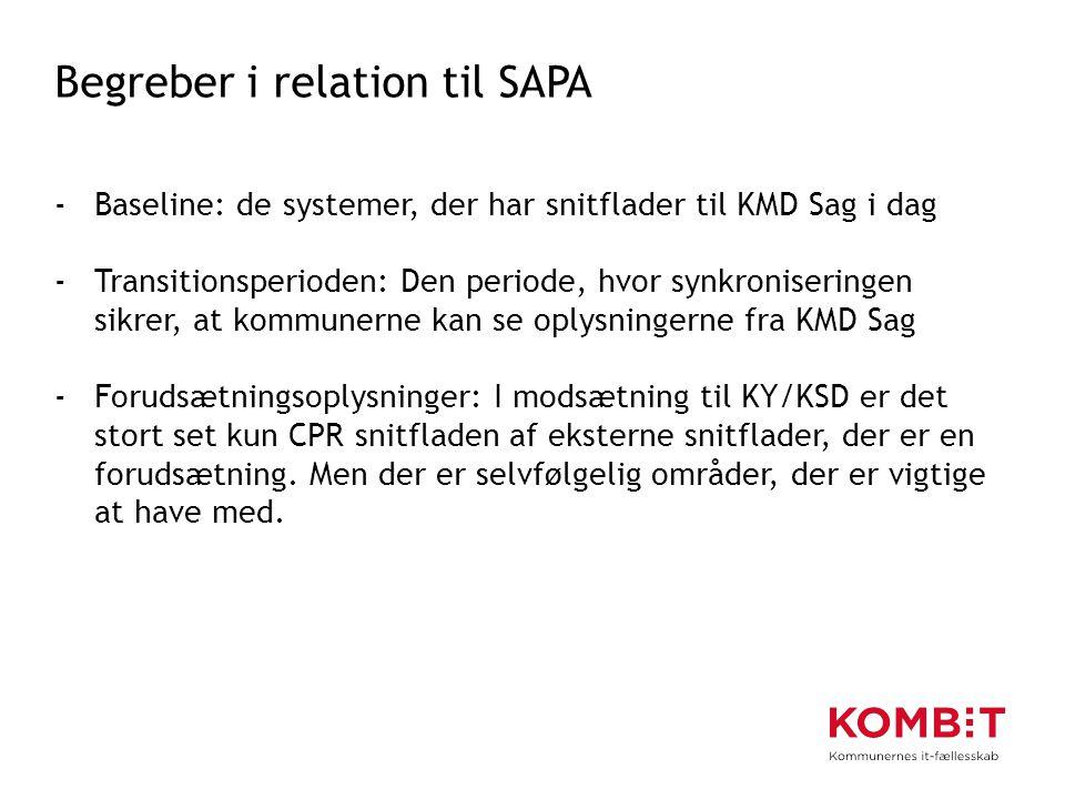 Begreber i relation til SAPA