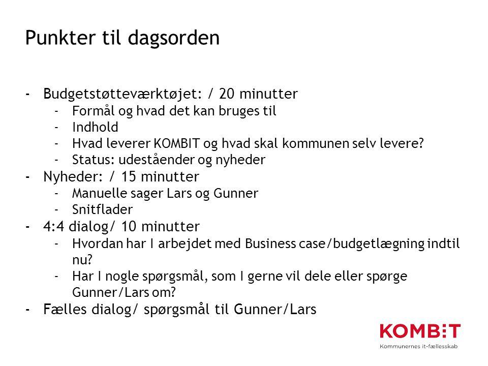 Punkter til dagsorden Budgetstøtteværktøjet: / 20 minutter
