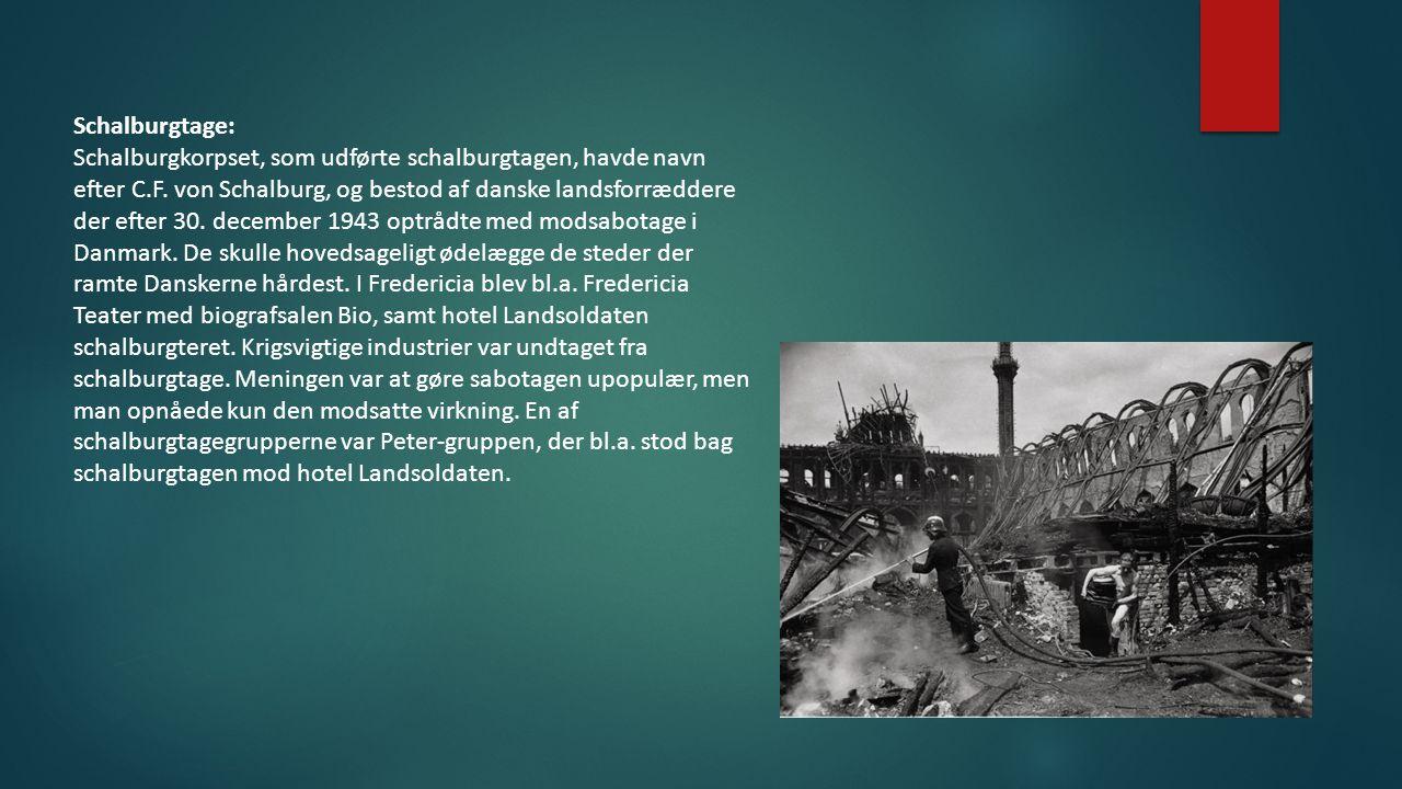 Schalburgtage: