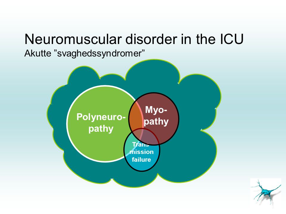 Neuromuscular disorder in the ICU