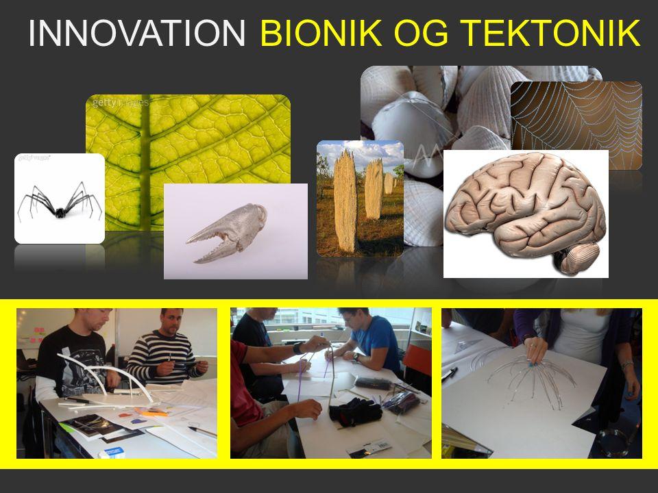 INNOVATION BIONIK OG TEKTONIK