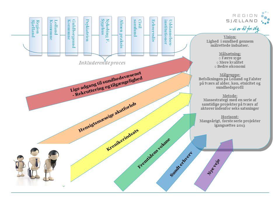 Inkluderende proces Lige adgang til sundhedsvæsenet
