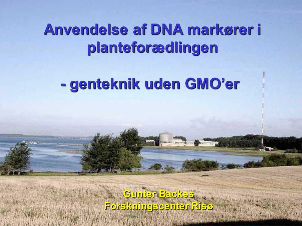 Anvendelse af DNA markører i planteforædlingen
