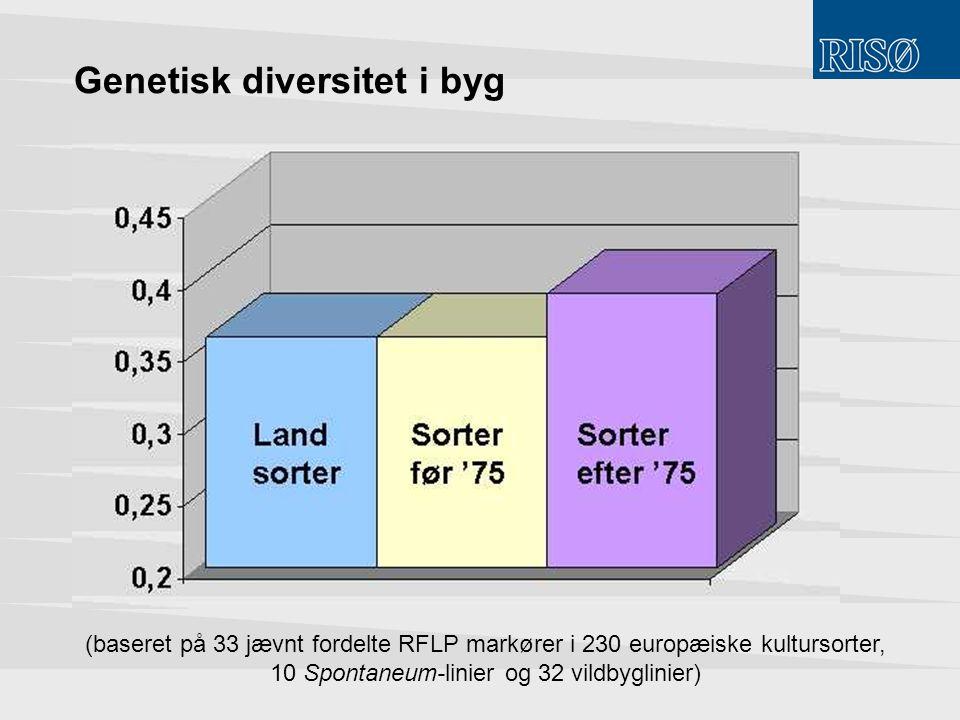 Genetisk diversitet i byg