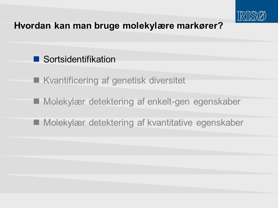 Hvordan kan man bruge molekylære markører