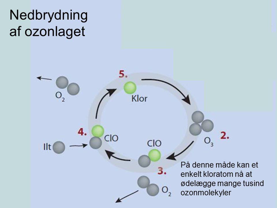 Nedbrydning af ozonlaget