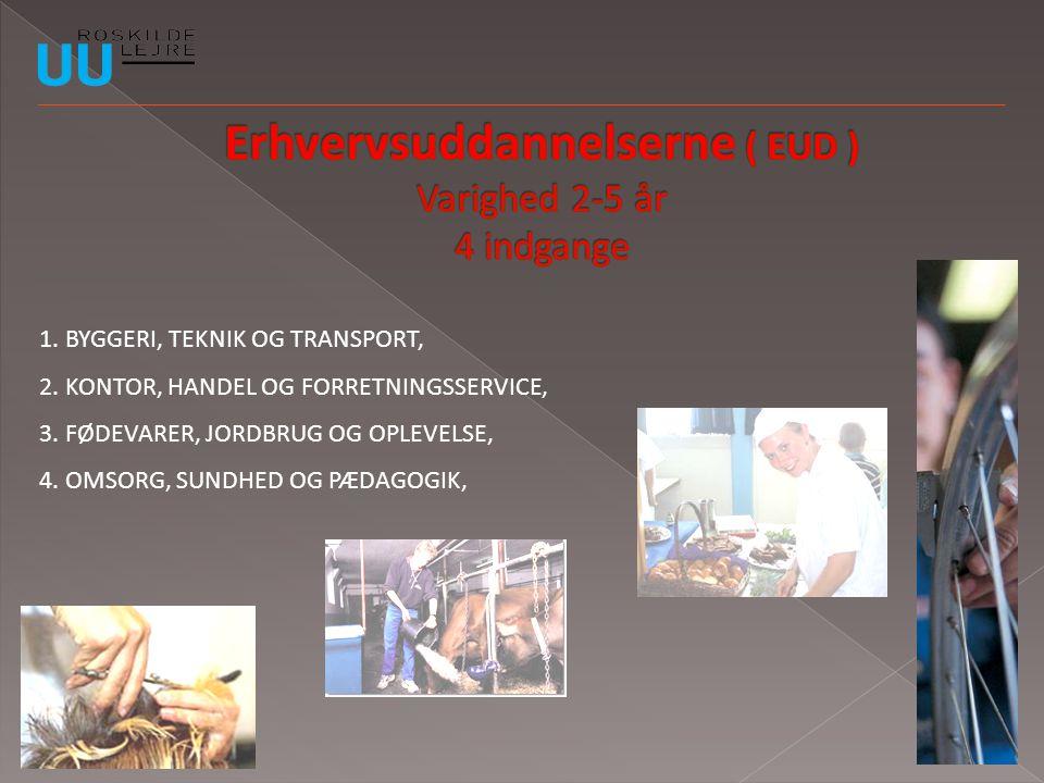 Erhvervsuddannelserne ( EUD ) Varighed 2-5 år 4 indgange