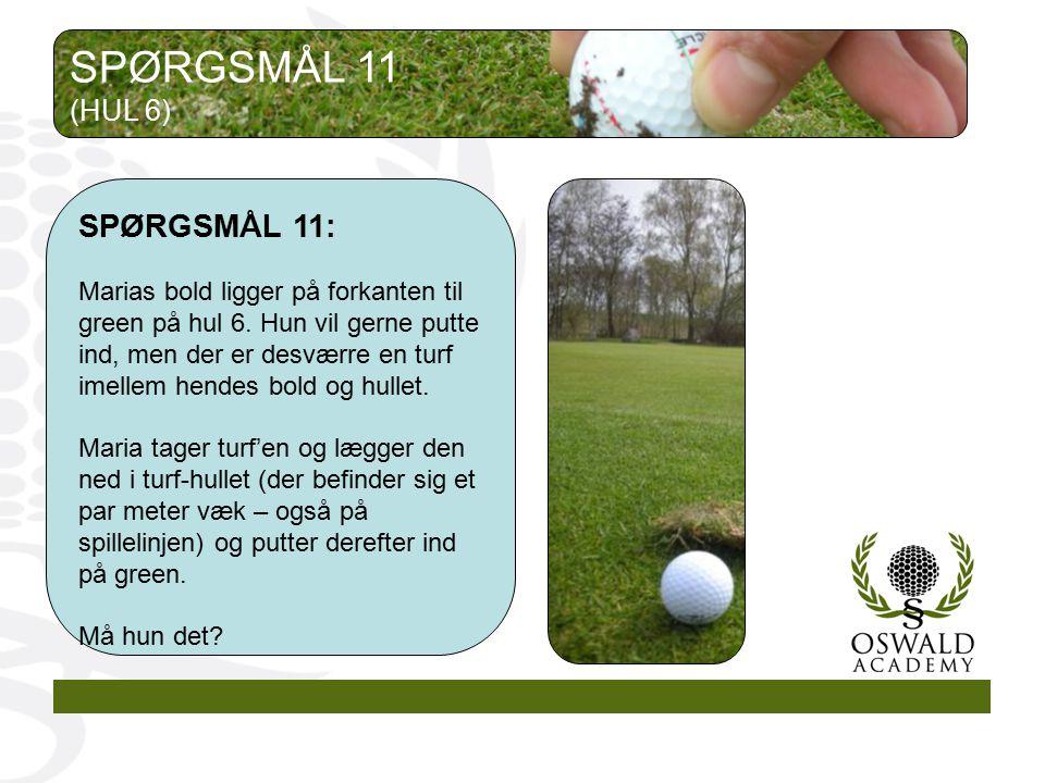 SPØRGSMÅL 11 SPØRGSMÅL 11: (HUL 6)