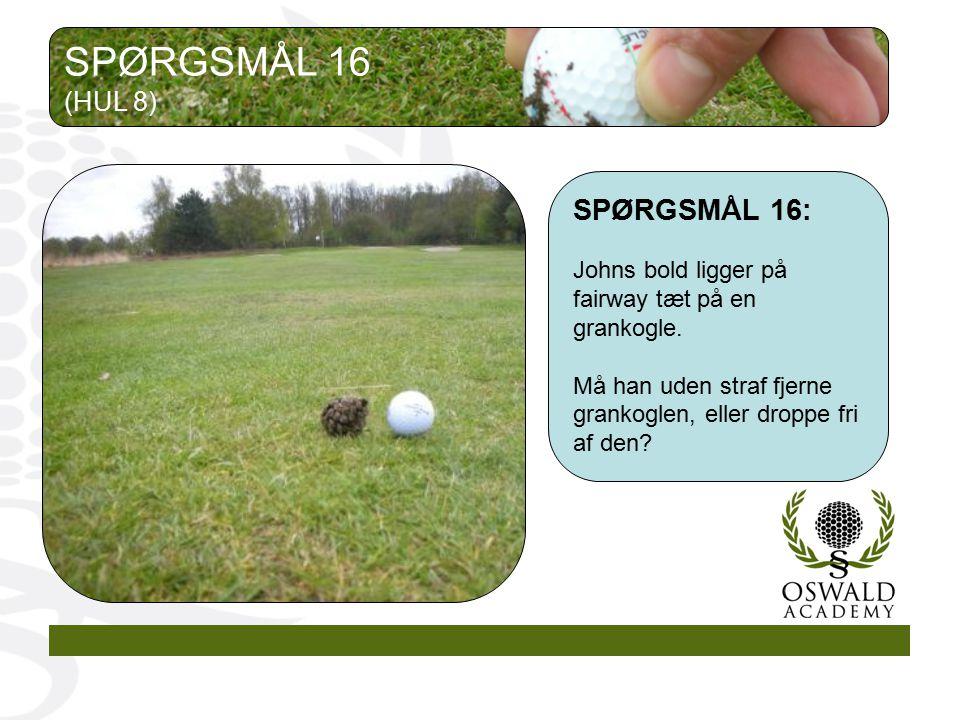 SPØRGSMÅL 16 SPØRGSMÅL 16: (HUL 8)