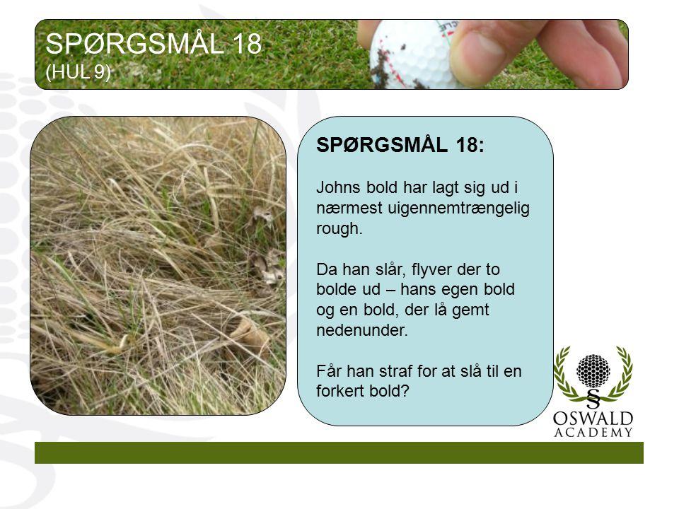 SPØRGSMÅL 18 SPØRGSMÅL 18: (HUL 9)