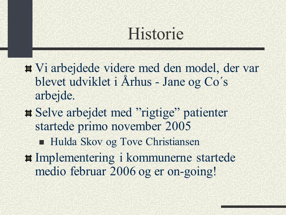 Historie Vi arbejdede videre med den model, der var blevet udviklet i Århus - Jane og Co´s arbejde.