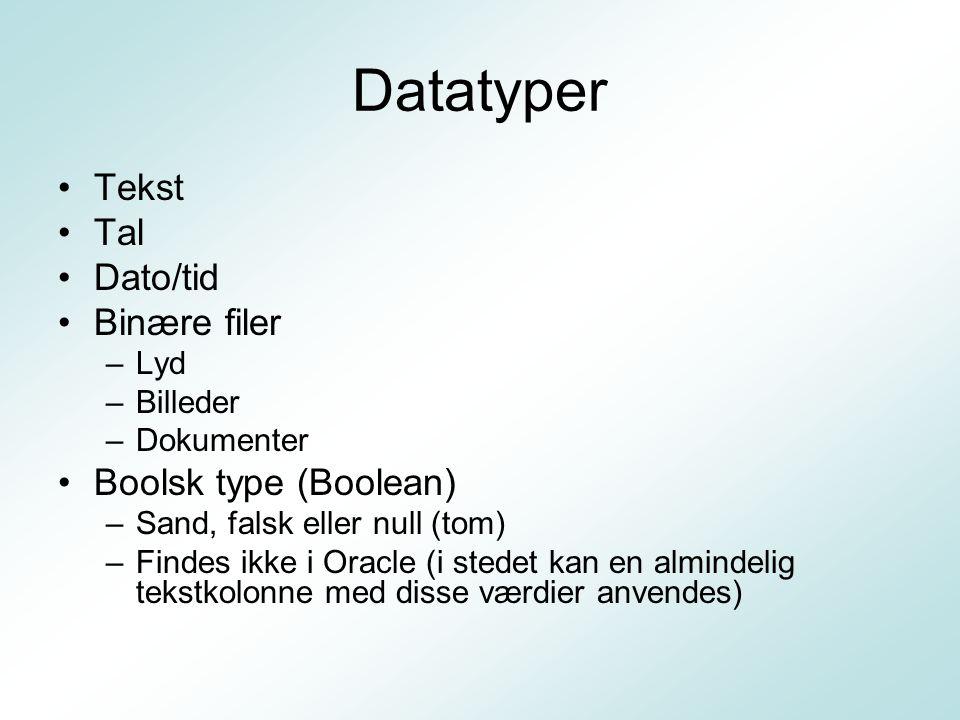 Datatyper Tekst Tal Dato/tid Binære filer Boolsk type (Boolean) Lyd