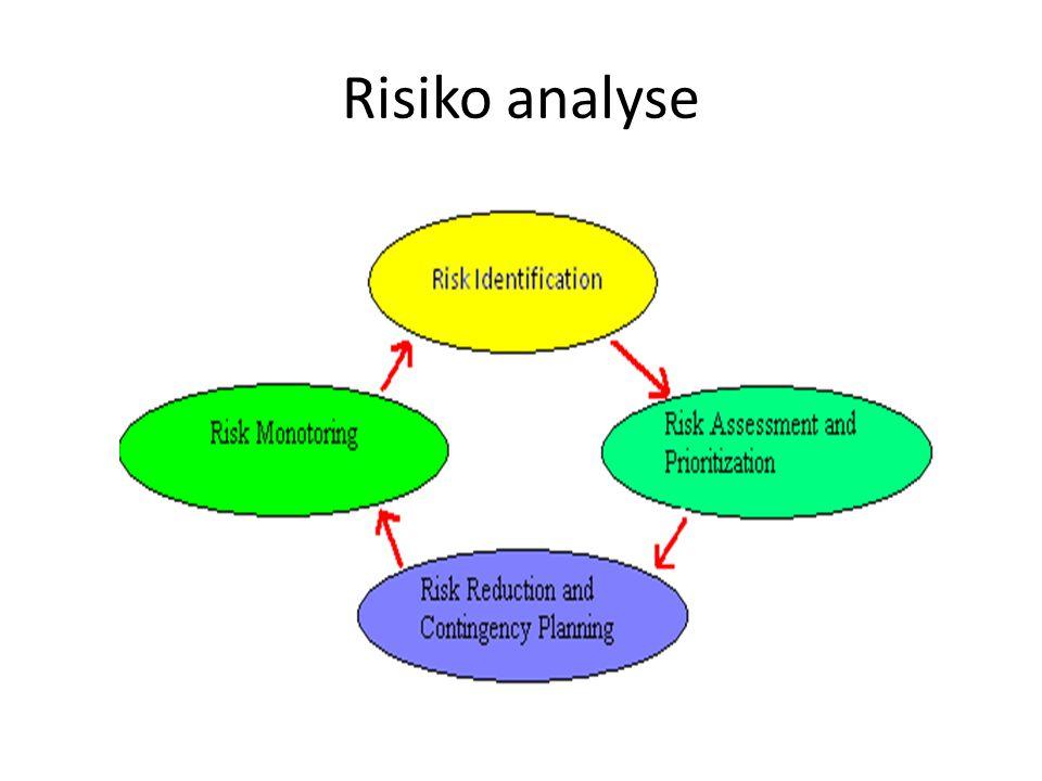 Risiko analyse
