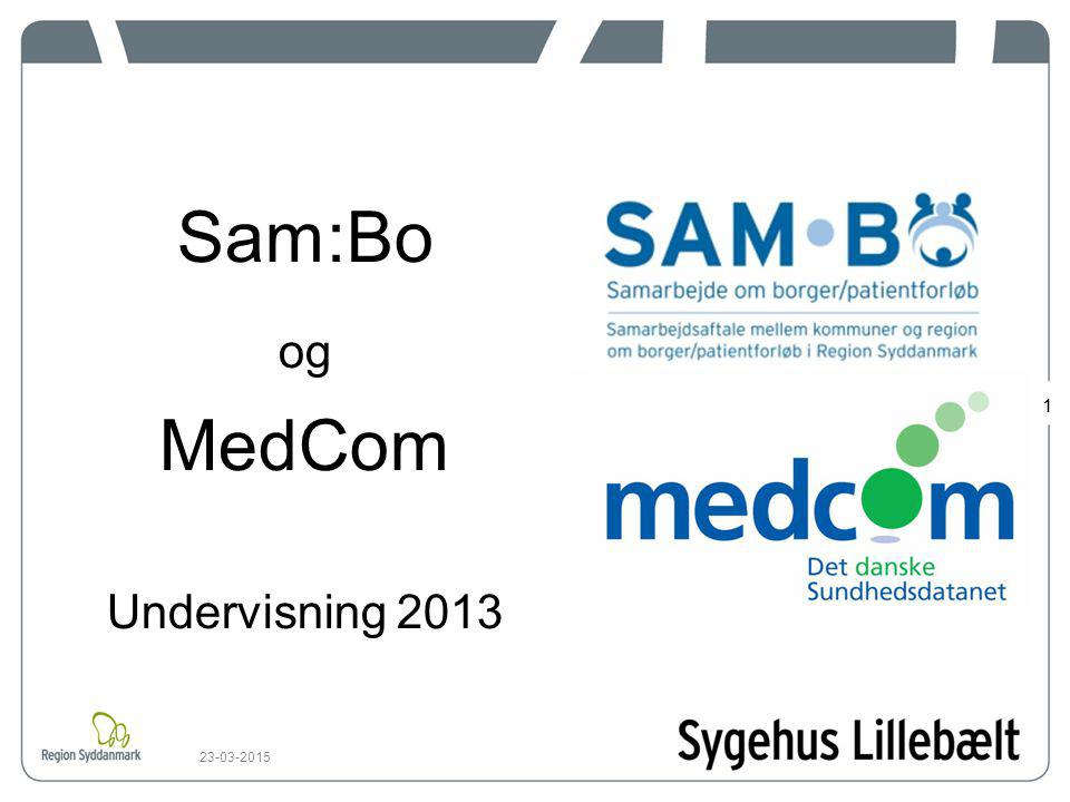 Sam:Bo og MedCom Undervisning 2013