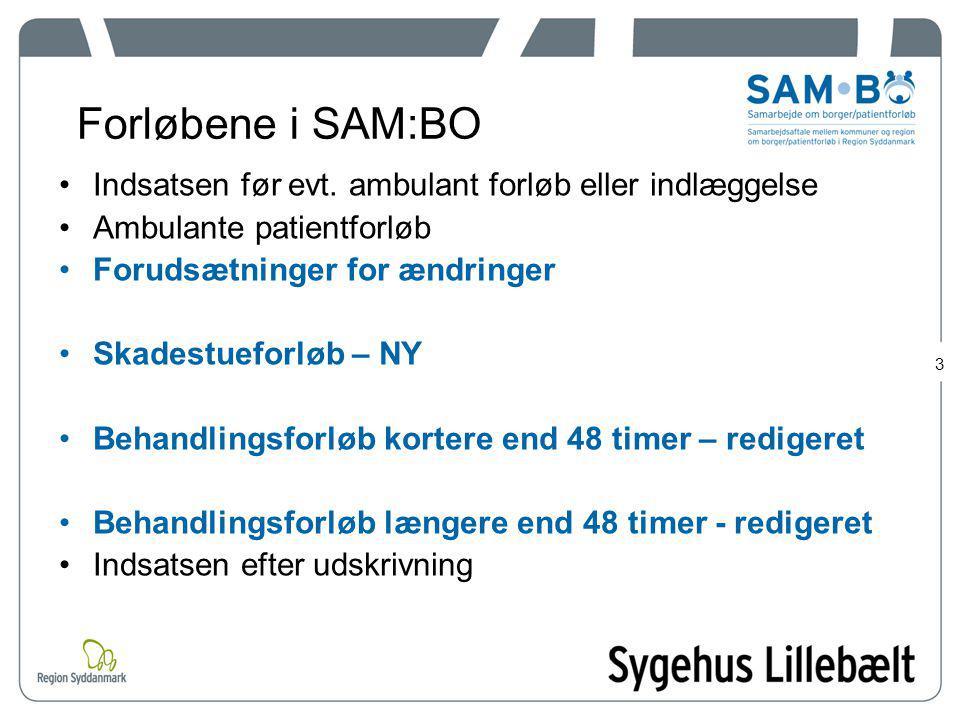 Forløbene i SAM:BO Indsatsen før evt. ambulant forløb eller indlæggelse. Ambulante patientforløb. Forudsætninger for ændringer.