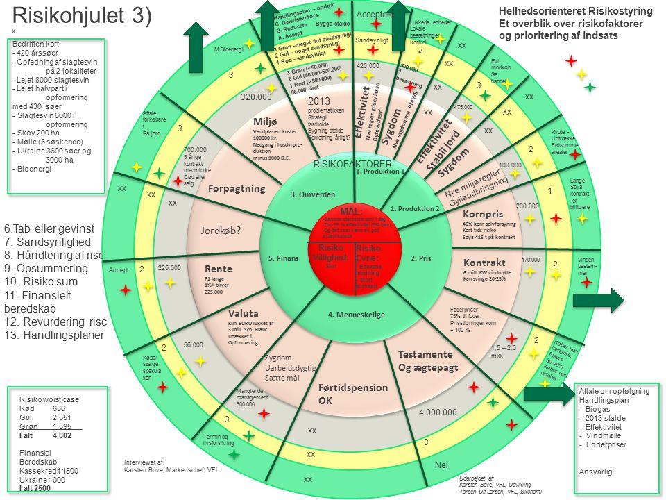 Risikohjulet 3) R Effektivitet Sygdom Miljø Effektivitet Stabil jord