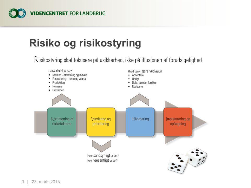 Risiko og risikostyring