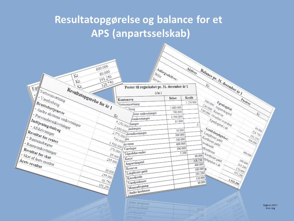 Resultatopgørelse og balance for et APS (anpartsselskab)