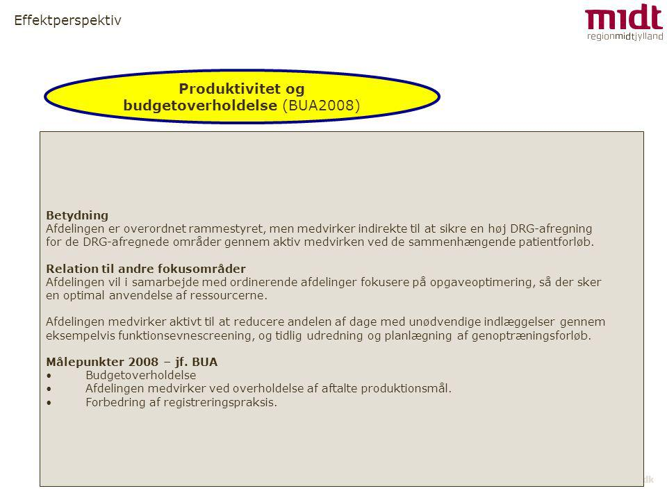 Produktivitet og budgetoverholdelse (BUA2008)