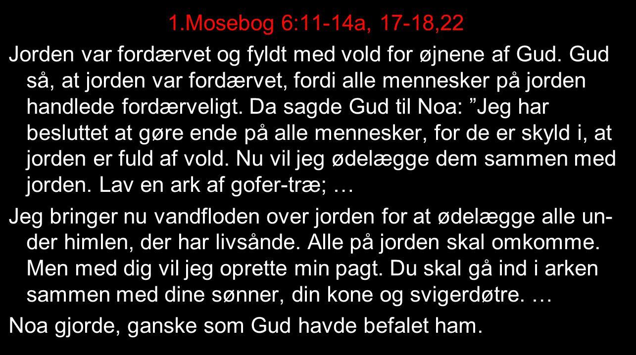 1.Mosebog 6:11-14a, 17-18,22 Jorden var fordærvet og fyldt med vold for øjnene af Gud.