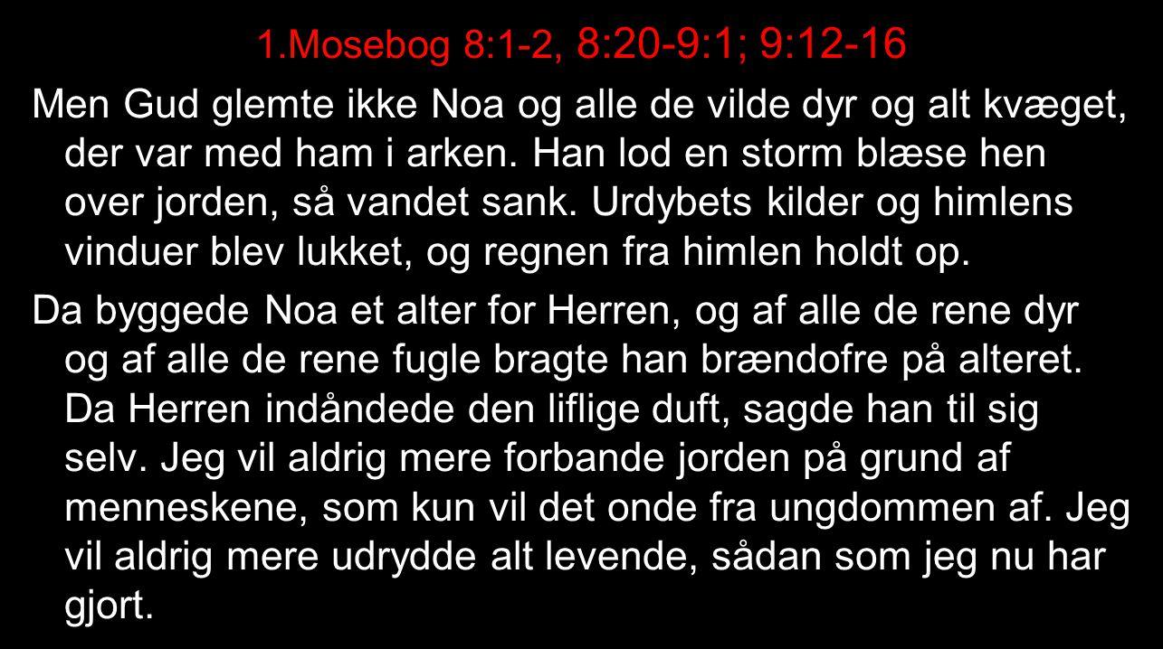 1.Mosebog 8:1-2, 8:20-9:1; 9:12-16