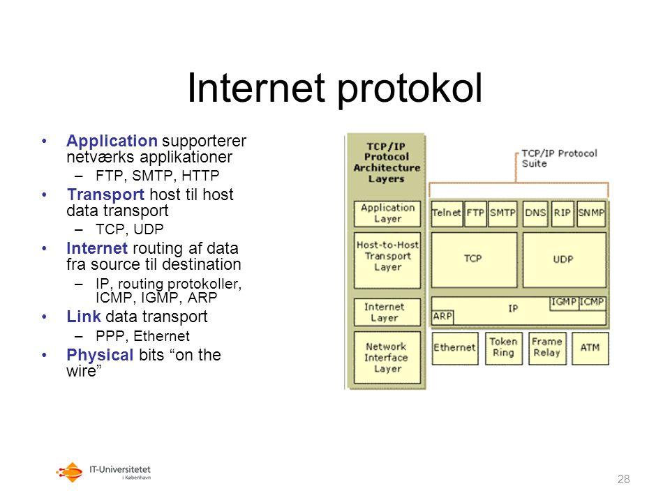 Internet protokol Application supporterer netværks applikationer