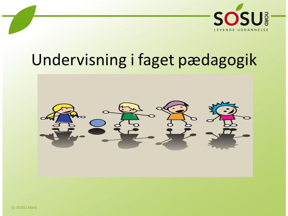 Undervisning i faget pædagogik