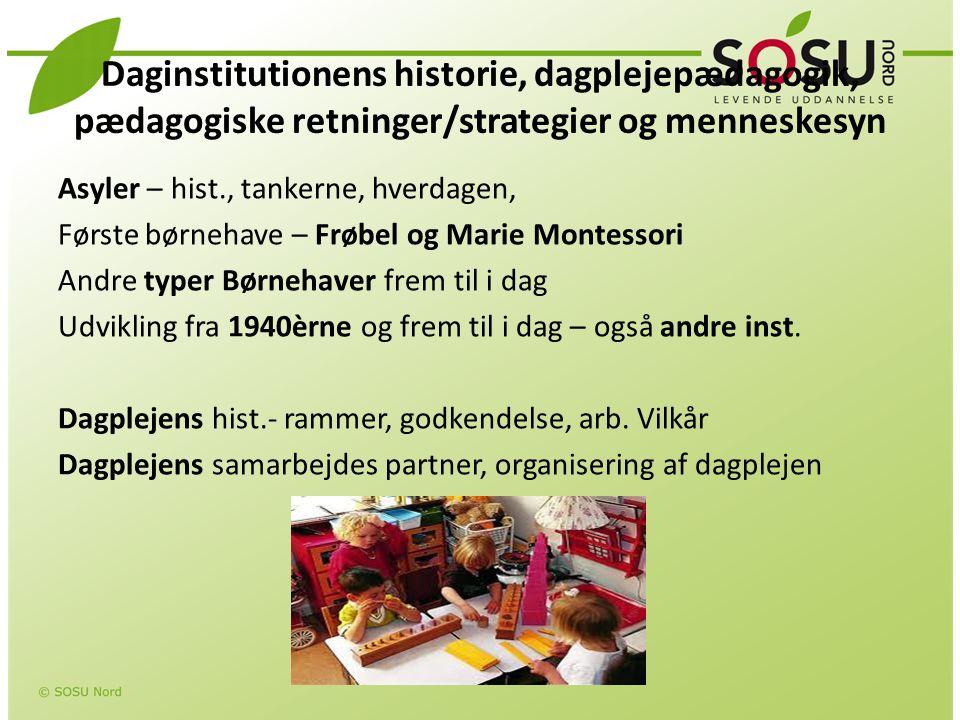 Daginstitutionens historie, dagplejepædagogik, pædagogiske retninger/strategier og menneskesyn