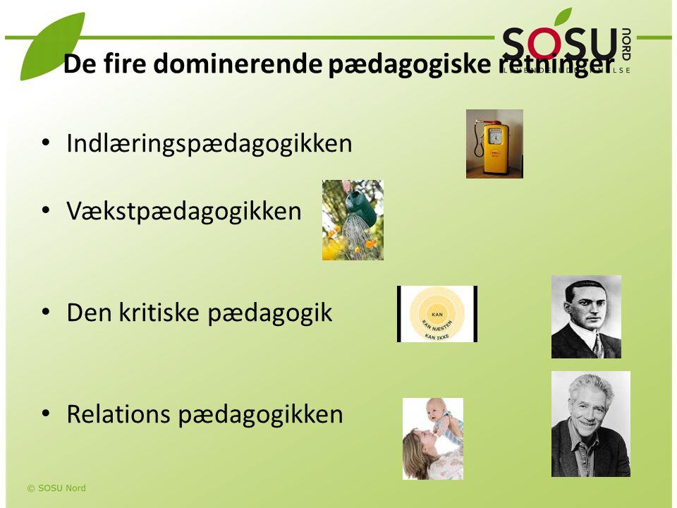 De fire dominerende pædagogiske retninger