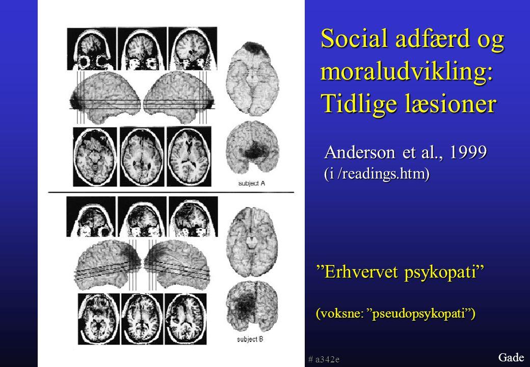Social adfærd og moraludvikling: Tidlige læsioner